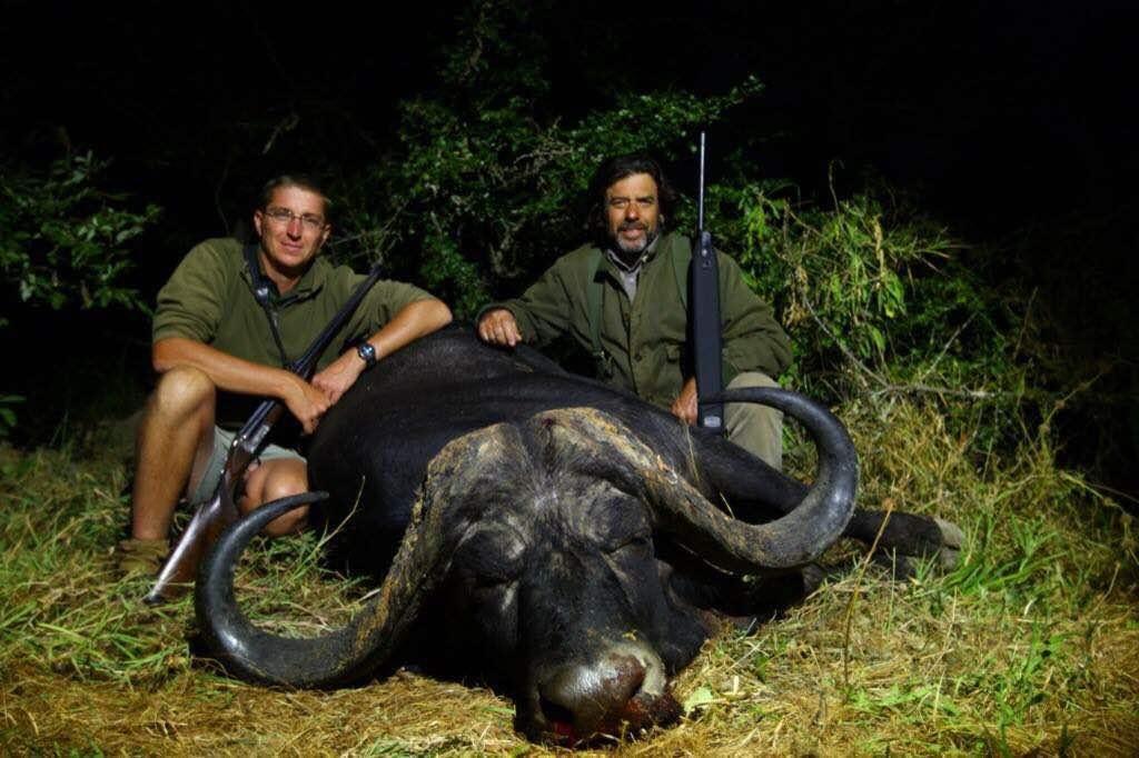 buffalo10